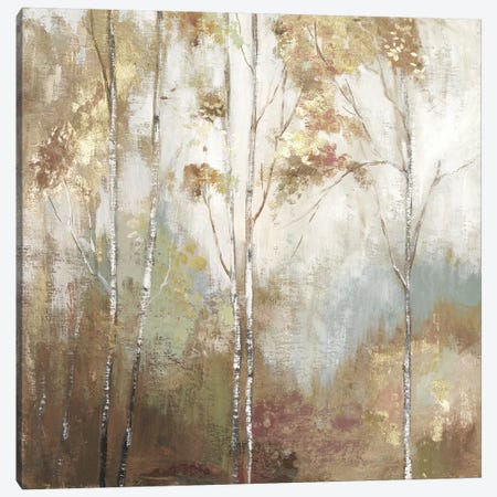 Fine Birch II 3-Piece Canvas #ALP286} by Allison Pearce Canvas Print