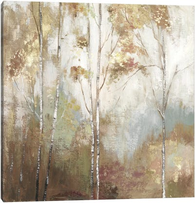 Fine Birch II Canvas Art Print