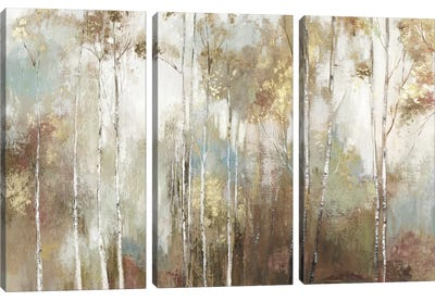 Fine Birch III Canvas Art Print