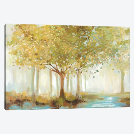 Forest River  Canvas Print #ALP288} by Allison Pearce Canvas Wall Art
