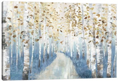 New Path I Canvas Art Print