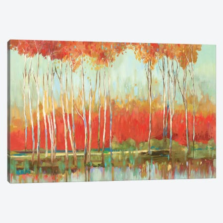 Red Horizon Canvas Print #ALP301} by Allison Pearce Canvas Print
