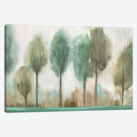 Tall Trees  Canvas Print #ALP309} by Allison Pearce Canvas Print