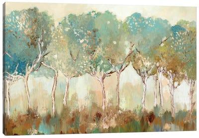 Golden Sunlight  Canvas Art Print