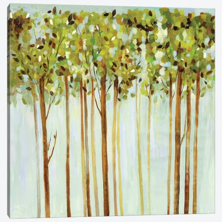 Green Leaves  Canvas Print #ALP318} by Allison Pearce Canvas Art