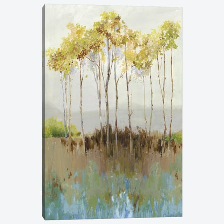Peaceful Woodland Canvas Print #ALP322} by Allison Pearce Canvas Print