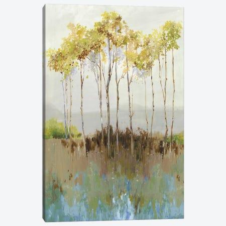 Peaceful Woodland Canvas Print #ALP322} by Allison Pearce Canvas Print