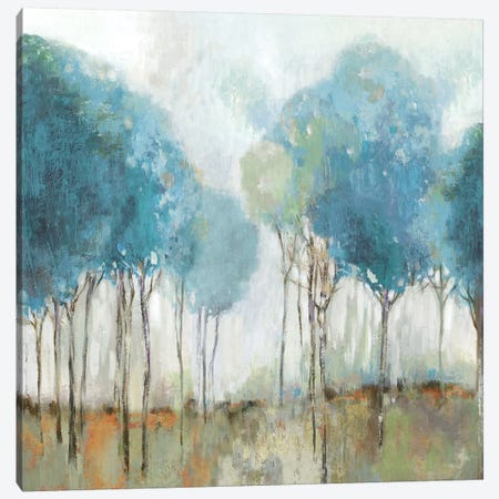 Misty Meadow II Canvas Print #ALP330} by Allison Pearce Canvas Art