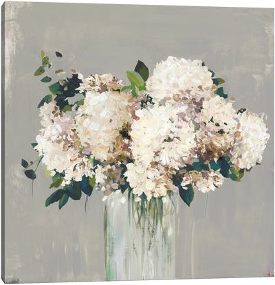 White Hydrangea  Canvas Art Print