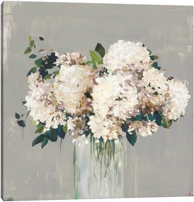 White Hydrangea  Canvas Art Print