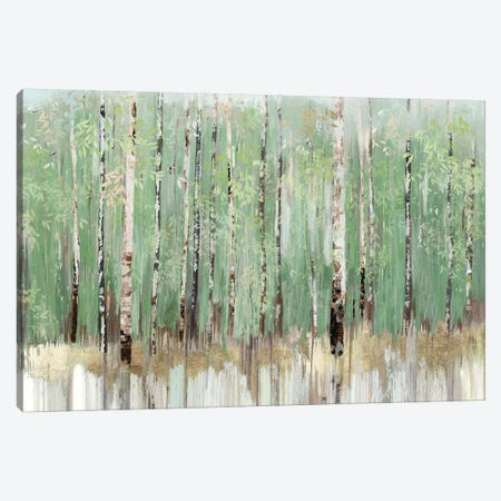 Tree Essence I Canvas Print #ALP335} by Allison Pearce Canvas Art Print