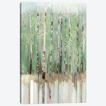 Tree Essence III Canvas Print #ALP337} by Allison Pearce Art Print