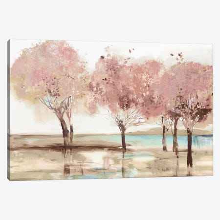 Spring Transition Canvas Print #ALP343} by Allison Pearce Art Print