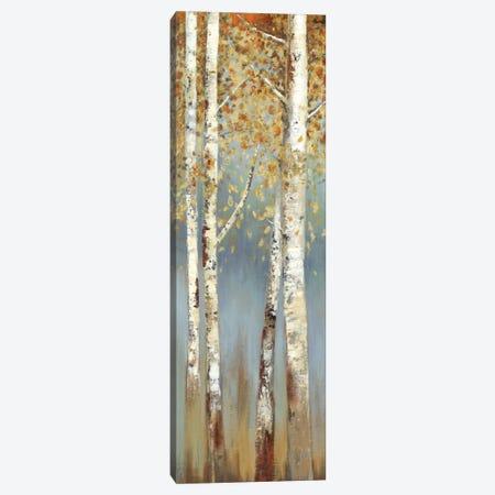 Butterscotch Birch Trees I Canvas Print #ALP35} by Allison Pearce Art Print