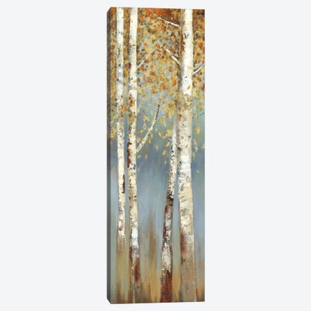 Butterscotch Birch Trees I Canvas Print #ALP35} by Allison Pearce Art Print