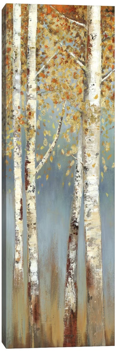 Butterscotch Birch Trees I Canvas Art Print
