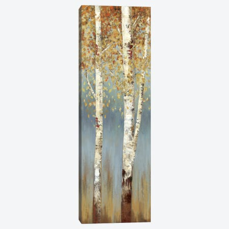 Butterscotch Birch Trees II Canvas Print #ALP36} by Allison Pearce Canvas Print