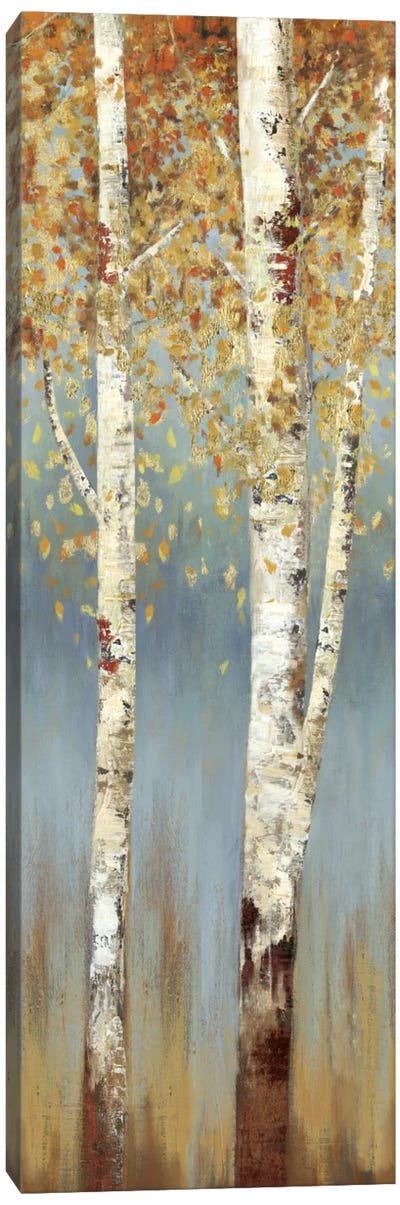 Butterscotch Birch Trees II Canvas Art Print