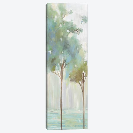 Enlightenment Forest III  Canvas Print #ALP370} by Allison Pearce Canvas Wall Art