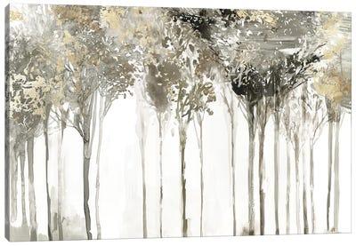 Golden Forest Lookout  Canvas Art Print