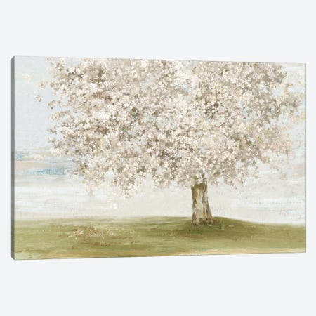 Language of Nature Canvas Print #ALP378} by Allison Pearce Canvas Artwork