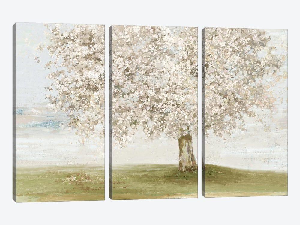 Language of Nature by Allison Pearce 3-piece Canvas Art Print