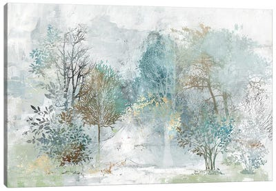 Mysterious Forest Canvas Art Print