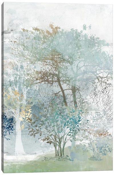 Silent Mystery II Canvas Art Print