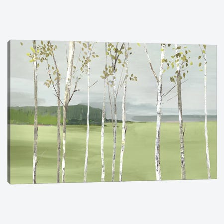 Birch Valley 3-Piece Canvas #ALP390} by Allison Pearce Canvas Wall Art