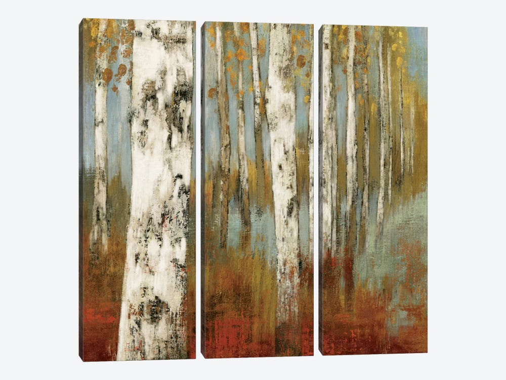 Along The Path II by Allison Pearce 3-piece Canvas Artwork