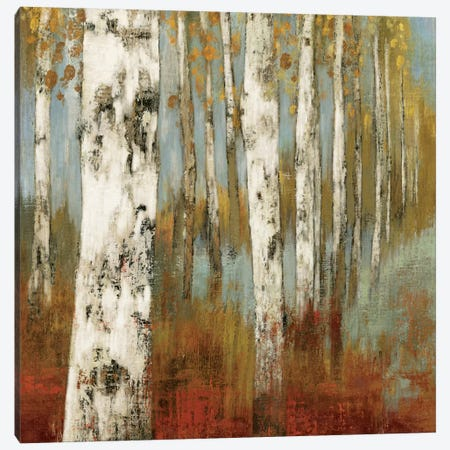 Along The Path II Canvas Print #ALP3} by Allison Pearce Art Print