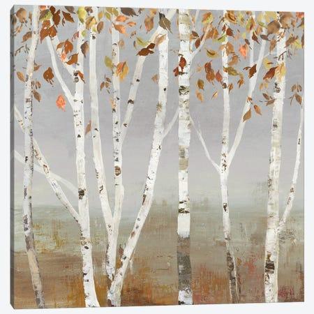 Fall Diffraction Canvas Print #ALP407} by Allison Pearce Canvas Art Print