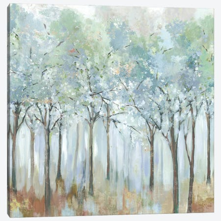 Forest of Light Canvas Print #ALP408} by Allison Pearce Canvas Art