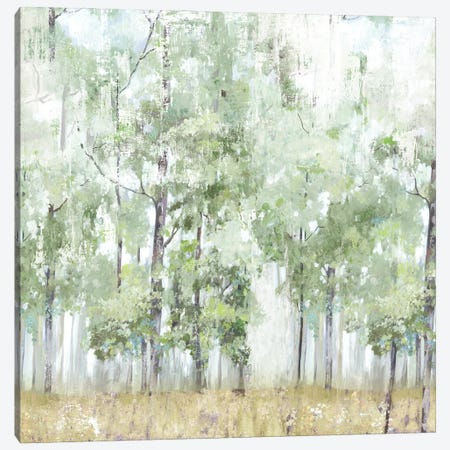 Into the Forest Light Canvas Print #ALP414} by Allison Pearce Canvas Artwork