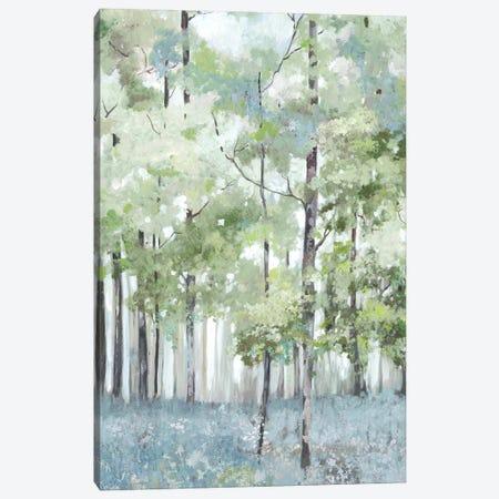 Light Forest Canvas Print #ALP415} by Allison Pearce Canvas Wall Art