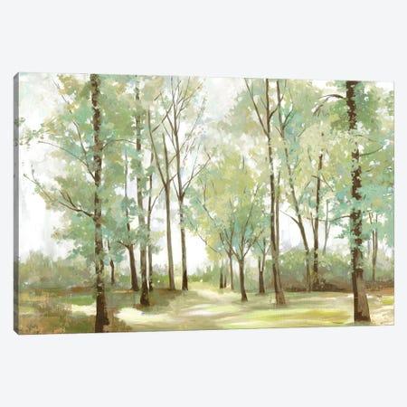 Peaceful Sunshine Canvas Print #ALP418} by Allison Pearce Canvas Art Print