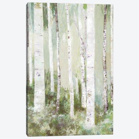Quiet Beauty Canvas Print #ALP419} by Allison Pearce Canvas Print