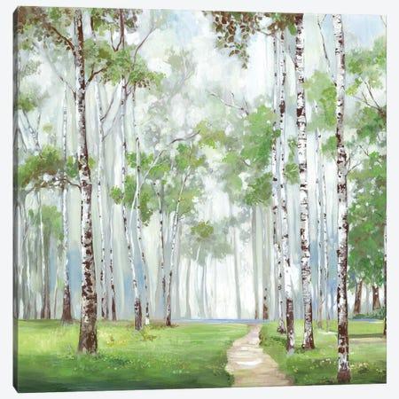 Quiet Path Canvas Print #ALP420} by Allison Pearce Canvas Art