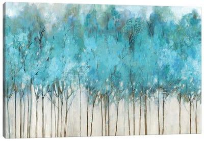Teal Whisper Canvas Art Print
