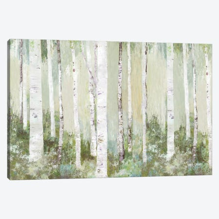 Tranquil Forest Canvas Print #ALP425} by Allison Pearce Art Print