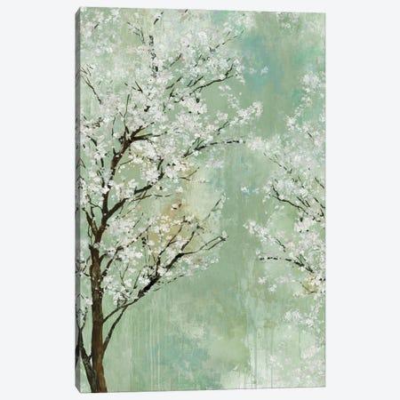 Apple Grove I Canvas Print #ALP428} by Allison Pearce Canvas Artwork