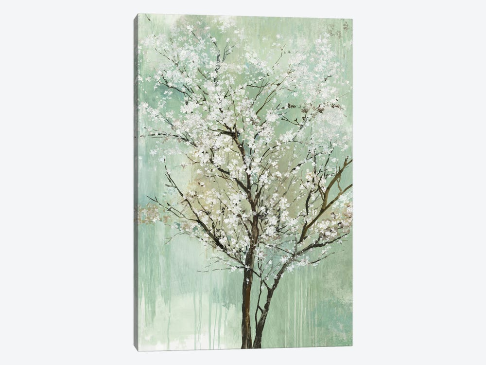 Apple Grove II by Allison Pearce 1-piece Canvas Wall Art