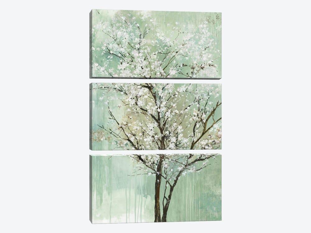 Apple Grove II by Allison Pearce 3-piece Canvas Wall Art