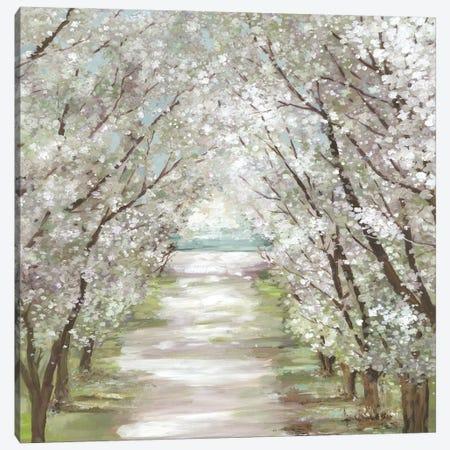 Blossom Pathway Canvas Print #ALP431} by Allison Pearce Art Print