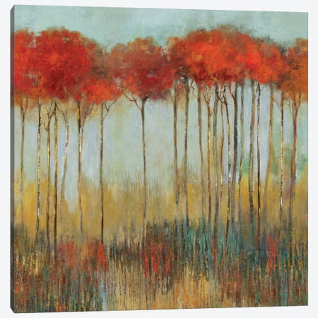 Amongst Friends I Canvas Print #ALP5} by Allison Pearce Canvas Artwork