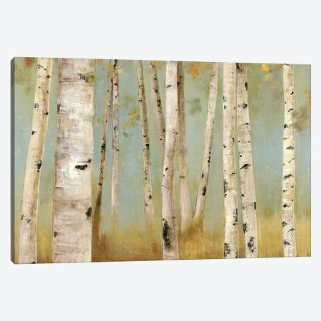 Eco I Canvas Print #ALP71} by Allison Pearce Canvas Art