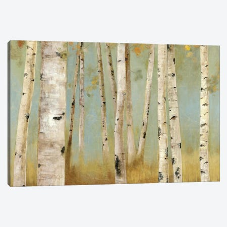 Eco I Canvas Print #ALP71} by Allison Pearce Canvas Art