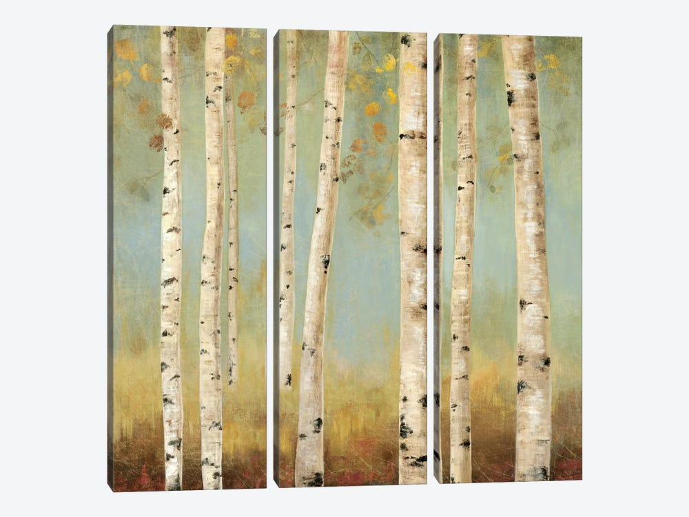 Eco II by Allison Pearce 3-piece Canvas Print