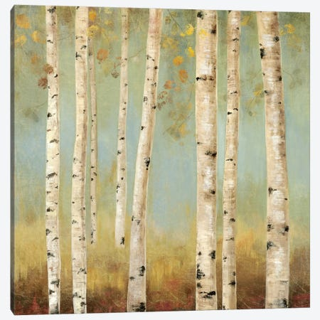 Eco II Canvas Print #ALP72} by Allison Pearce Canvas Art
