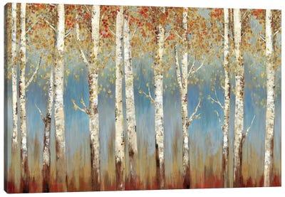 Falling Embers I Canvas Art Print